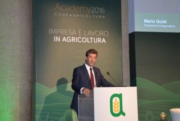 """ACADEMY 2016 – IMPRESA E LAVORO IN AGRICOLTURA  GUIDI PER CONFAGRICOLTURA: """"AFFERMARE IL VERO VOLTO DELL'AGRICOLTURA"""""""